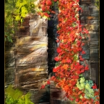 winifred-whitfield-red-vine