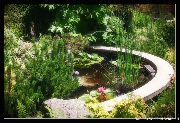 farm-gardens-017