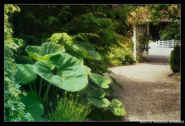farm-gardens-032