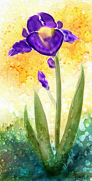 WW Iris Watercolor
