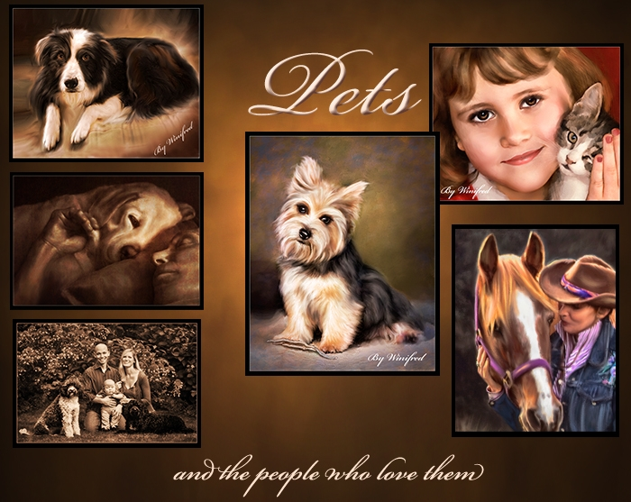 pet-portrait-banner