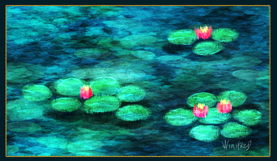 Water lily Store